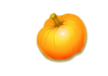 Pumpkin : ฟักทอง